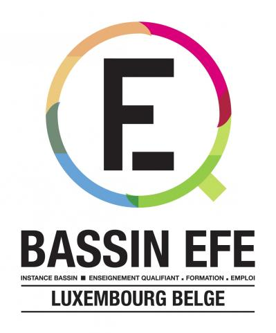 Bassin efe luxembourg logo def rvb